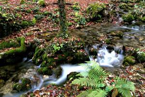 Small Waterfall on Papuk Mountain by Thorinair