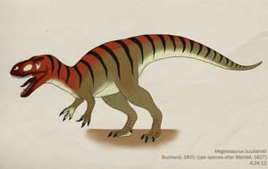033--MEGALOSAURUS BUCKLANDII by Green-Mamba