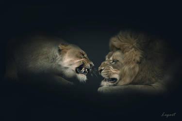 Quarrel. by LogartRU