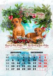 'Pincher-2010' - December 2 by LogartRU