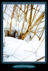 Snow by malik-trey