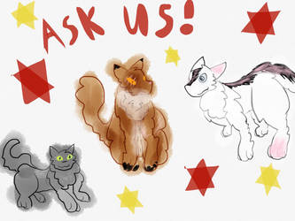 Ask us by transforpuppy