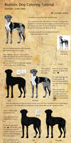 Dog Coloring Tutorial - Great Dane by LizzardDraws