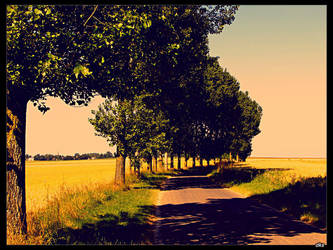 Countryside by dk-s