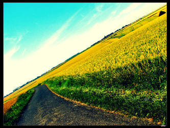 Route de campagne by dk-s