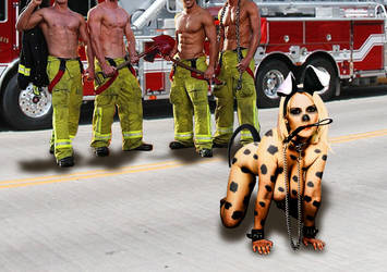 The Firehouse's New Pet by abisal