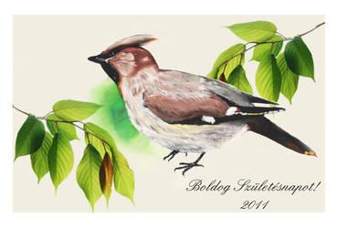 Birdie by celiah