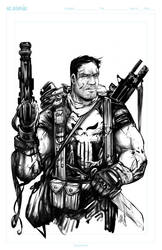 The Punisher Experiment by acosorio