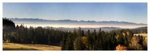 Morning fog by krychu84
