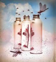 . . . Bottled Dreams . . . by ChIandra4U
