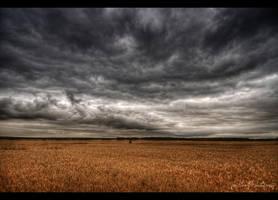Fields under the open sky by wchild