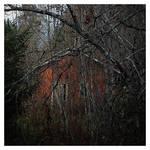 Abandoned Sauna by wchild
