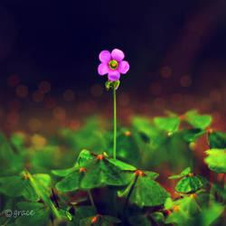 alone but HAPPY by IgNgRez