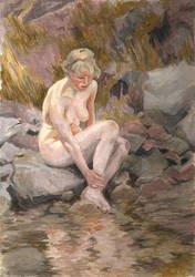 Study after Anders Zorn by Descartes2