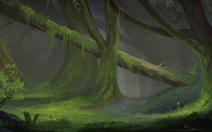 Mossy Forest by Naviira