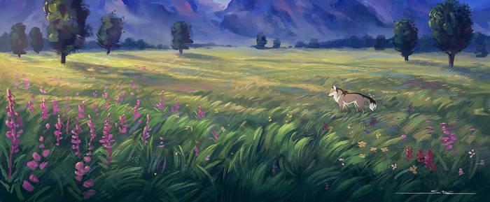 Meadow by Naviira