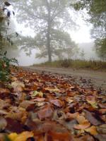 The oak by TantiCake