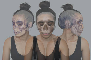 skulls transformation 2 by elizasimone