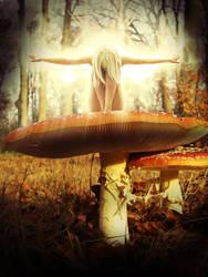 Autumnal Faerie Awakening by Sirius-gfx