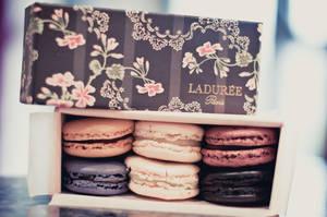 Laduree Macaroons by MMortAH
