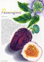 Passionfruit by galaticknightmomiji