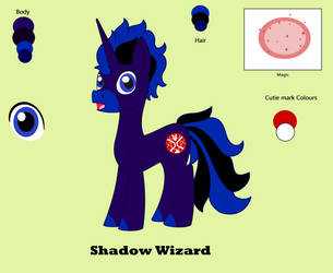 Reference sheet: Shadow Wizard by TheEasterArt
