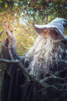 The Lord of the Ring cosplay. Gandalf by Mellefuielle