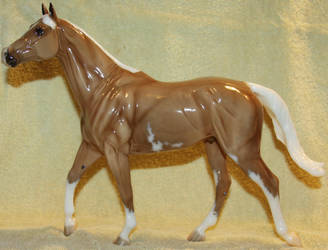 Breyer - Carrick - Stock 1 by Lovely-DreamCatcher