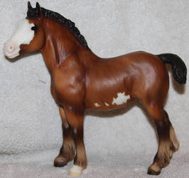 Breyer - Bluebell - Stock 1 by Lovely-DreamCatcher