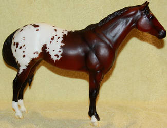 Breyer - Sonsela - Stock by Lovely-DreamCatcher