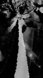 Desolation by Abstt