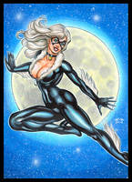 BLACK CAT OVERSIZED PERSONAL SKETCH CARD by AHochrein2010