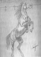 Horse by FreakZombieCannibaL