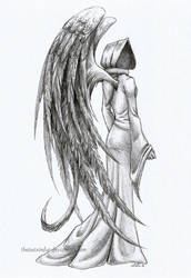 Black Wings by theLostSindar