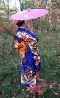 Autumn Kimono Li 18 by Falln-Stock