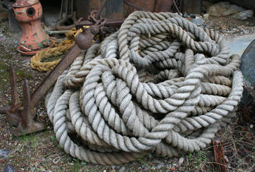 MoA Museum 419 Rope by Falln-Stock