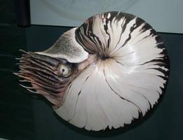 Denver Museum Prehistoric 521 by Falln-Stock