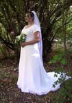 Jen Wedding Dress 1 by Falln-Stock