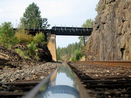 Rail and Trestle by paploothelearned