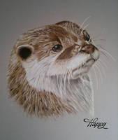 Otter Portrait by blue5dragons