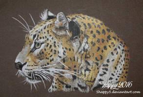Leopard Portrait by blue5dragons