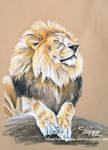 Lion Laze by blue5dragons