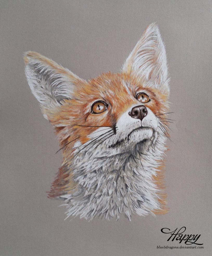 Fox Cub on Grey by blue5dragons