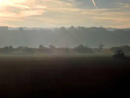 Foggy Morning by gatyi