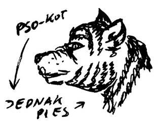 Pso-kot by Kejti2002