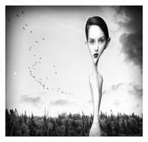 Miss-understood by davidrabin