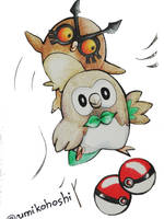 Hoothoot and Rowlet by umikohoshi