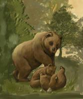Mama Bear  by seyyartedorov