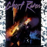 Ghost Rider Prince by uwedewitt