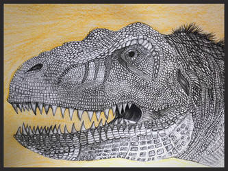 COMPLETED REXY by tpallier